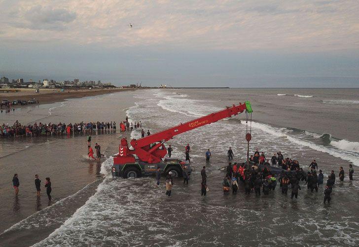 Socorristas y vecinos de la ciudad colaboraron con las tareas de rescate de la ballena jorobada que encalló en Punta Mogotes