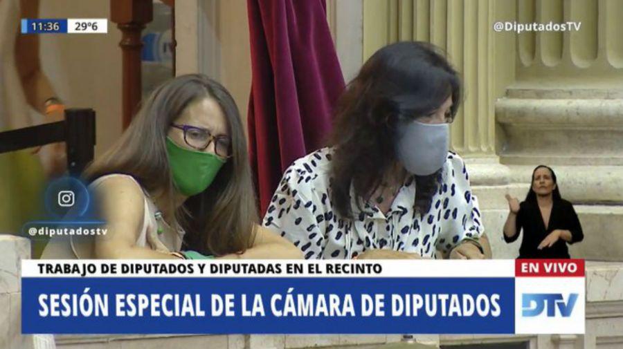 Vilma Ibarra y Elizabeth Gómez Alcorta, en un palco del Senado. Foto: DTV