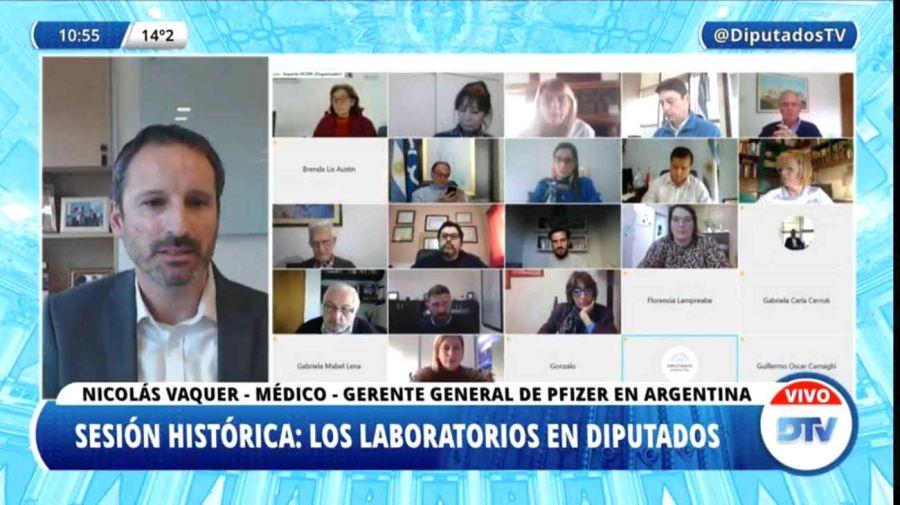Representante de laboratorio Pfizer, Nicolas Vaquer, ante el Congreso.