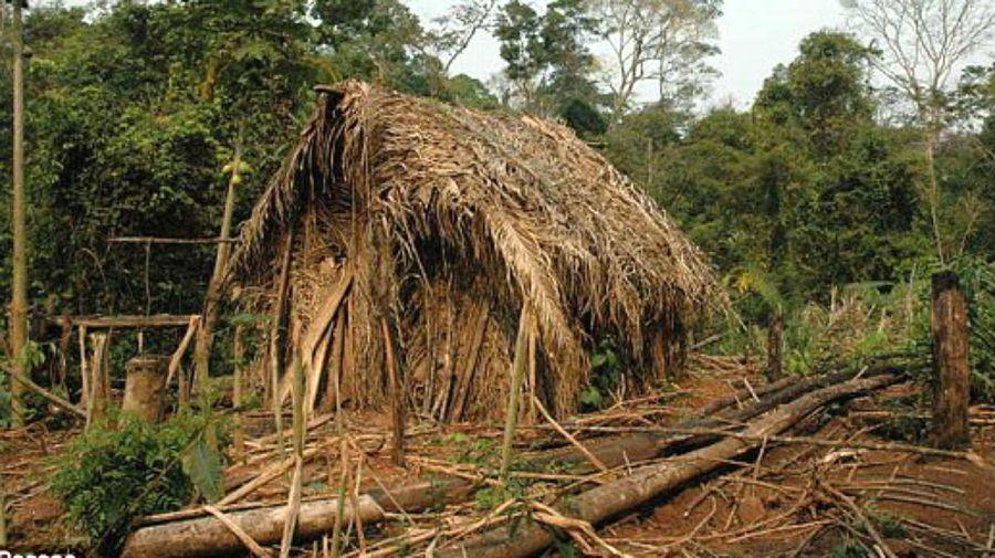 La choza del indígena solitario de Rondonia, en el límite amazónico de Brasil con Bolivia.