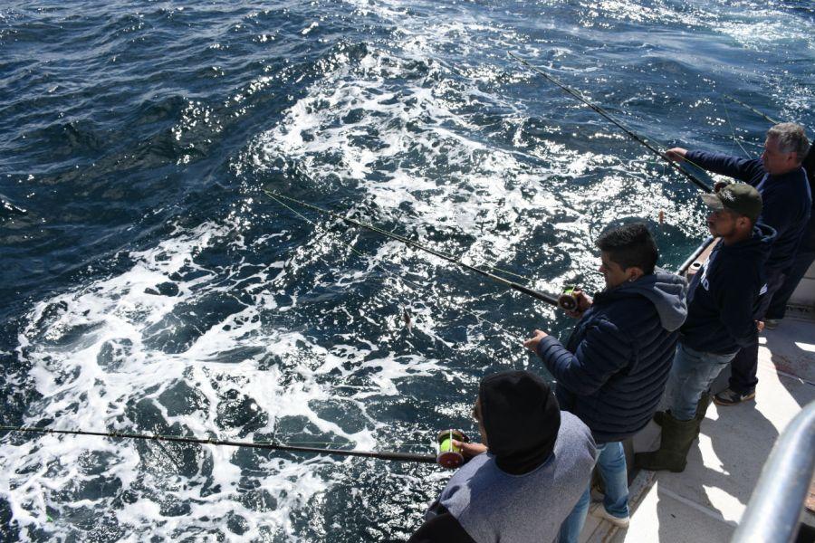 1122_Batallas con salmones a 60 metros de profundidad