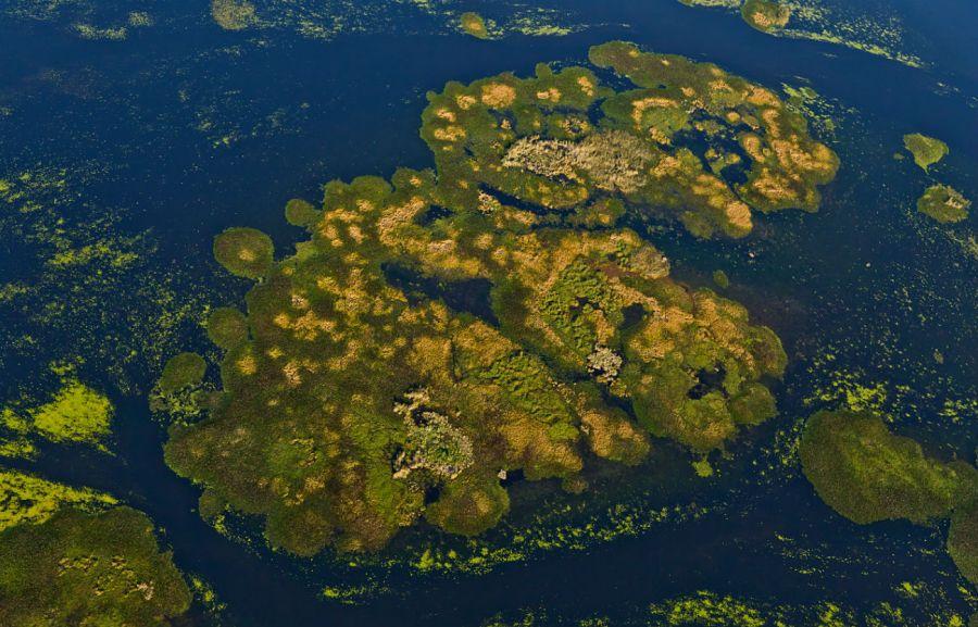 1209_Parque Nacional Iberá: nace el mayor espacio natural de la Argentina