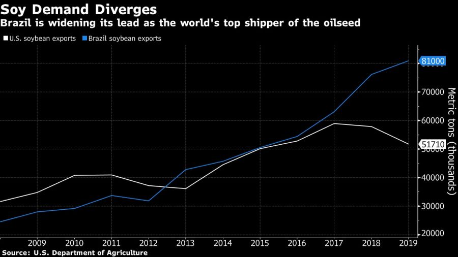 Brazil is widening its lead as the world's top shipper of the oilseed