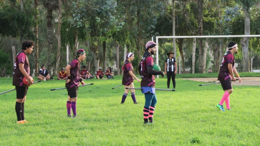 Quidditch Deathly Dragons g_20181219