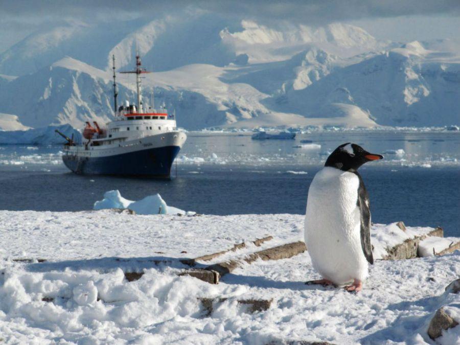 0113_Cómo se deben comportar los turistas en la Antártida