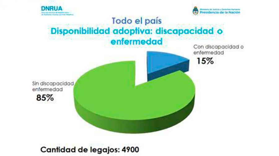 adopcion-01212019-02