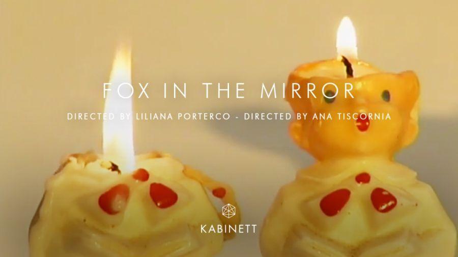 Fox In The Mirror, Liliana Porter 30012019