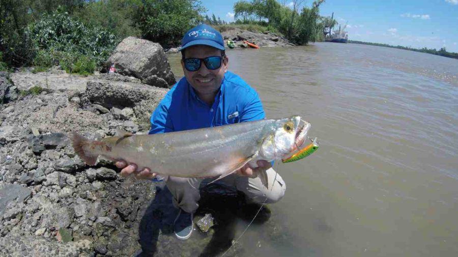 Río Paraná: variada con buenos colmillos 6