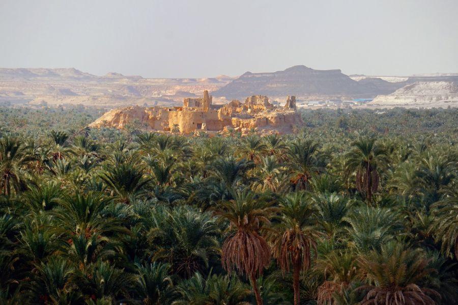 0225_Siwa, un oasis en el desierto egipcio