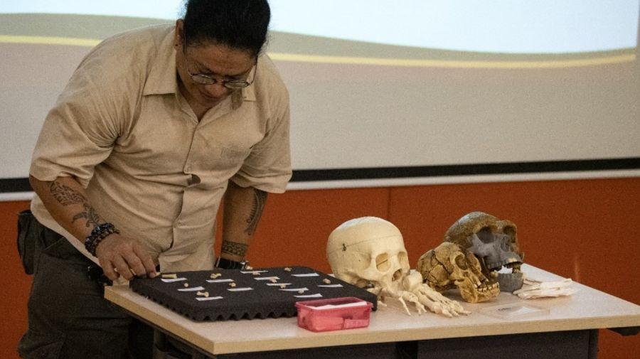 hallazgo restos fosiles 2 04112019
