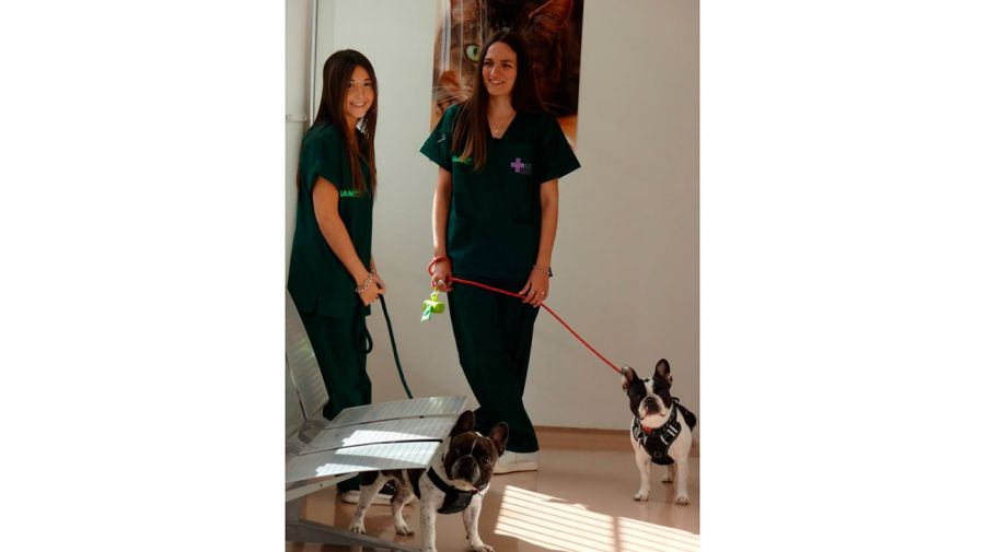 hospital-veterinario-usal-10052019-01