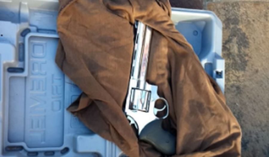 Detuvieron a un hombre que intentó entrar armado a Casa Rosada
