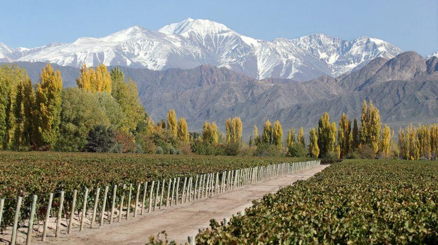 Terraza de los Andes