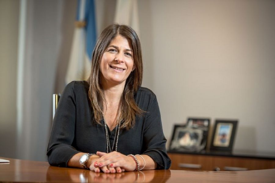 La senadora PRO Guadalupe Tagliaferri.