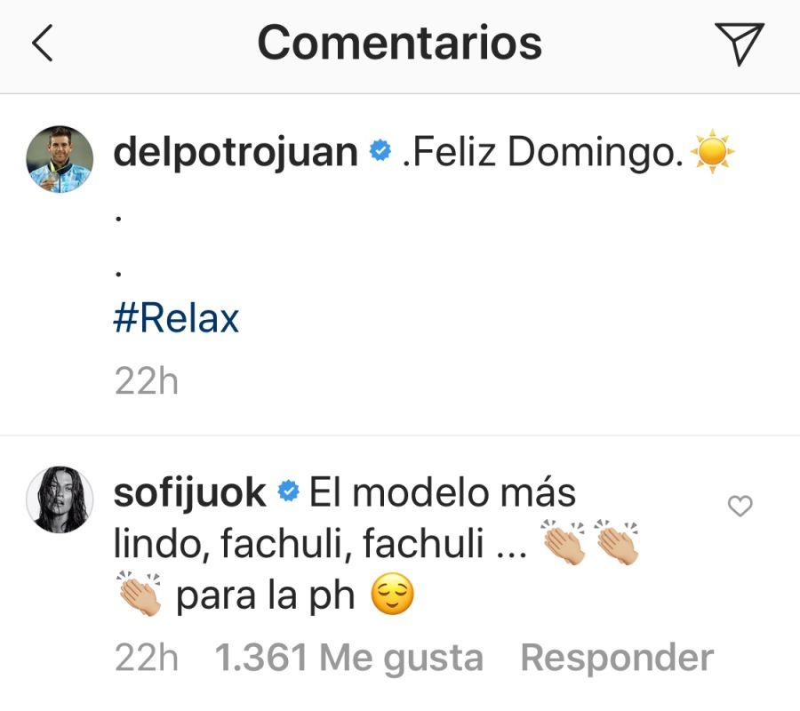 El romántico mensaje mensaje de Jujuy a Juan Martín del Potro