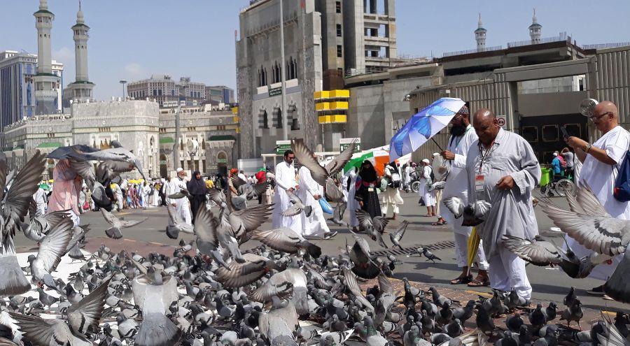 Peregrinos a La Meca 13082019_g