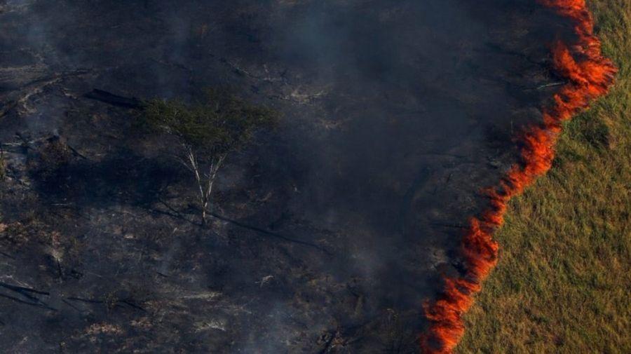amazonas fuego 5 08232019