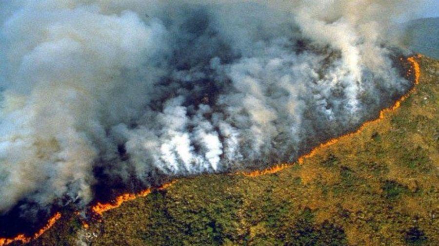 incendio amazonas 08232019
