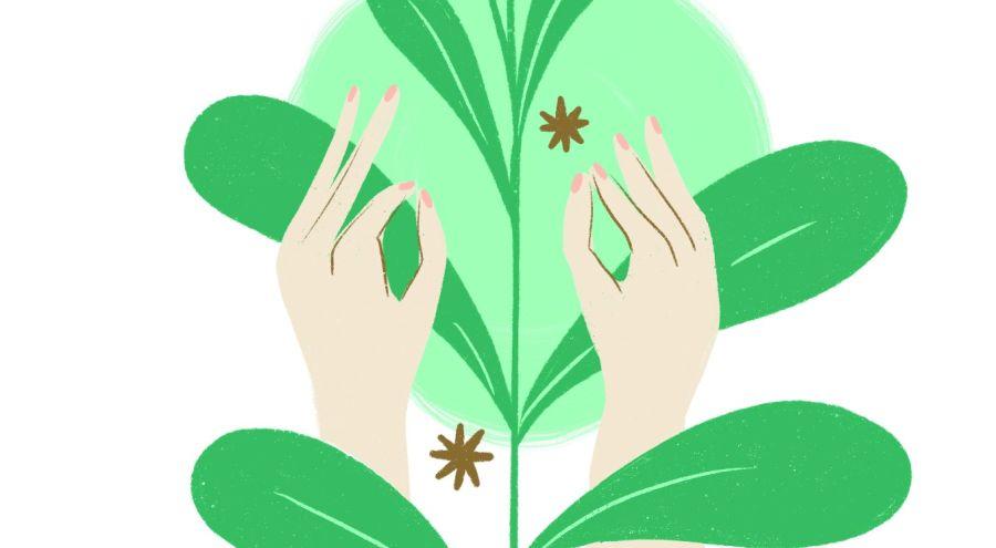 Alimentos, rituales y tips para mantener una vida armoniosa y detox