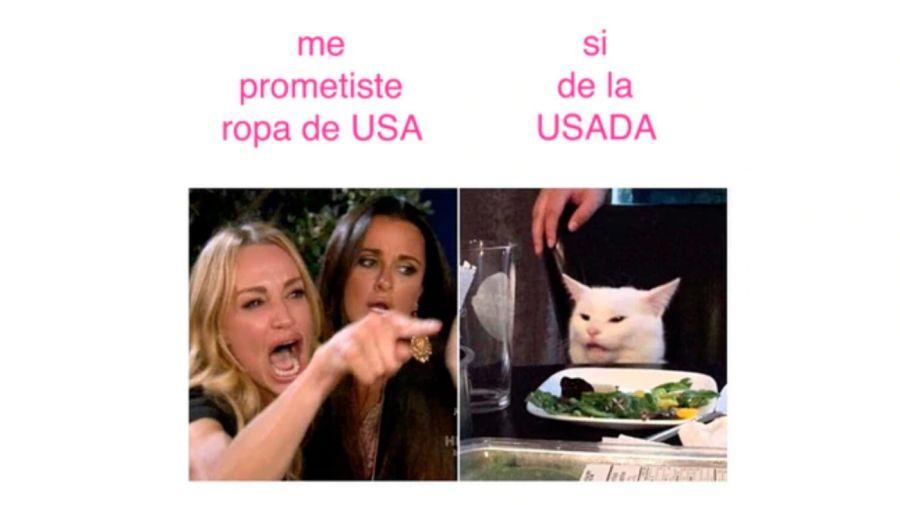 meme gato 2 08302019