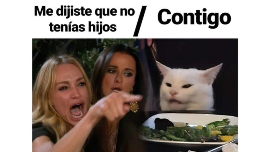 meme gato 6 08302019
