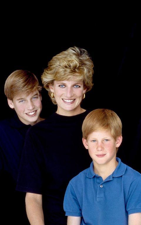 Detalles del último encuentro entre Lady Di y sus hijos William y Harry
