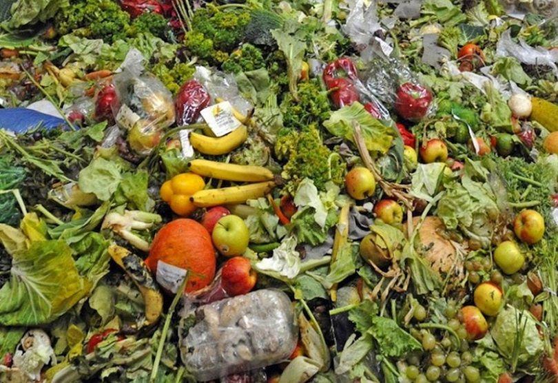 La ONU advirtió que América Latina desperdicia el 20% de la comida del mundo.