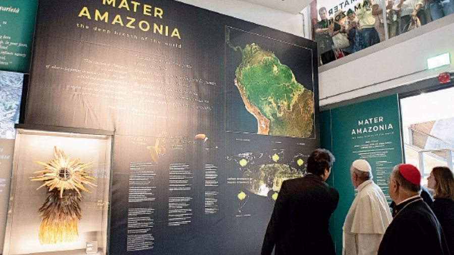 Papa Francisco y el Amazonas