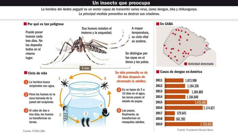20191124_mosquito_dengue_infografia_g.jpg