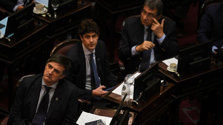 Senado. Se votó la Emergencia Económica tras una maratónica sesión.