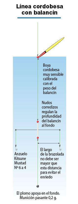 Línea cordobesa con balancín para pejerrey