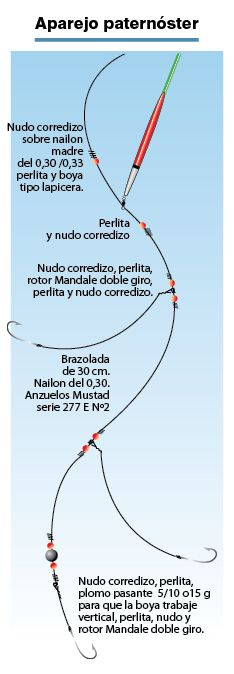 Línea paternóster para la pesca de pejerrey a flote