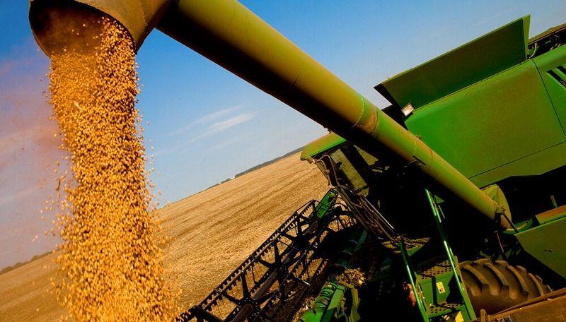 El Gobierno analiza aumentar 3% las retenciones a la soja y sus derivados.