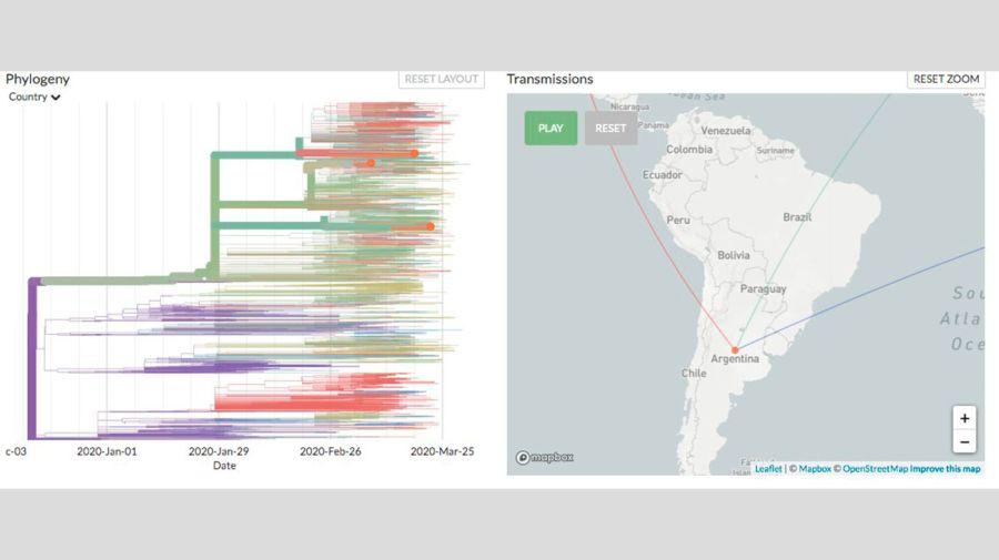 cientificos-argentinos-secuenciaron-el-genoma