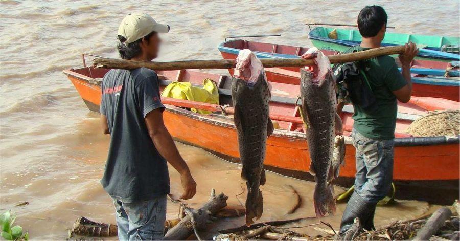 2704_pescadores_artesanales