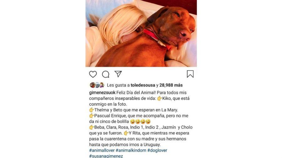 Susana Gimenez y Kiko en el Día del Animal