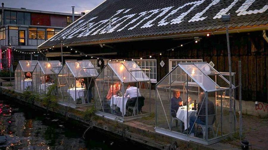 Invernaderos de cuarentena: restaurante de Holanda