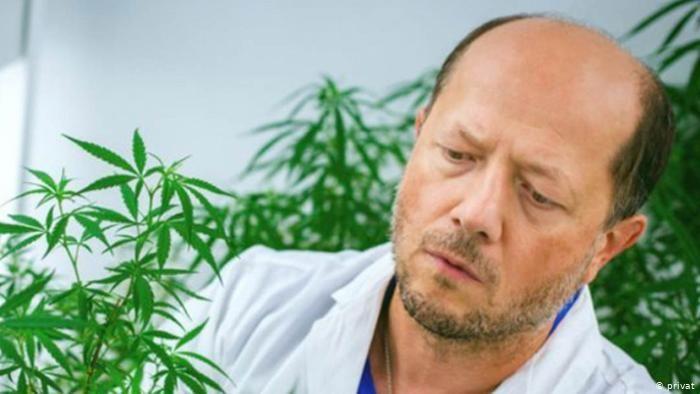 12-5-2020 Ivor Kovalchuk cannabis