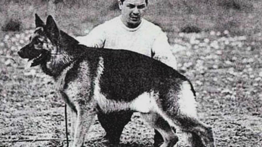 Chonino, el héroe que inspiró el Día Nacional del Perro en Argentina