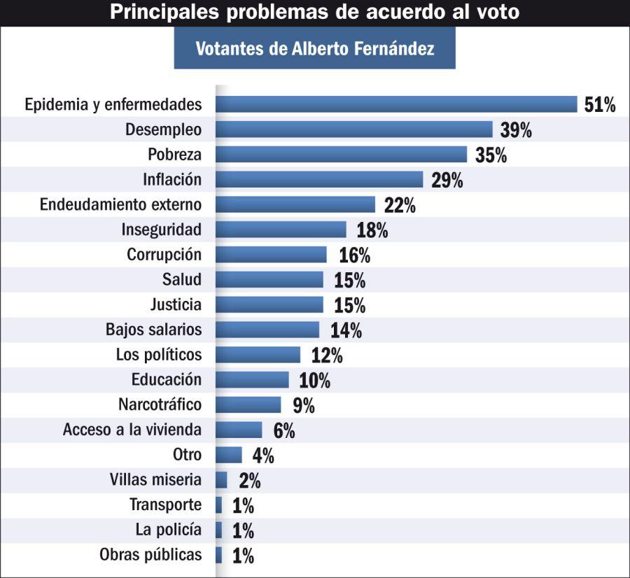 Principales problemas de acuerdo al voto (votantes de Alberto Fernández)