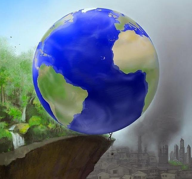 0811_deforestacion