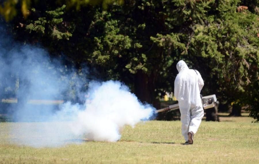 2408_mosquito_dengue