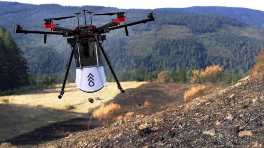 0709_drones_arboles
