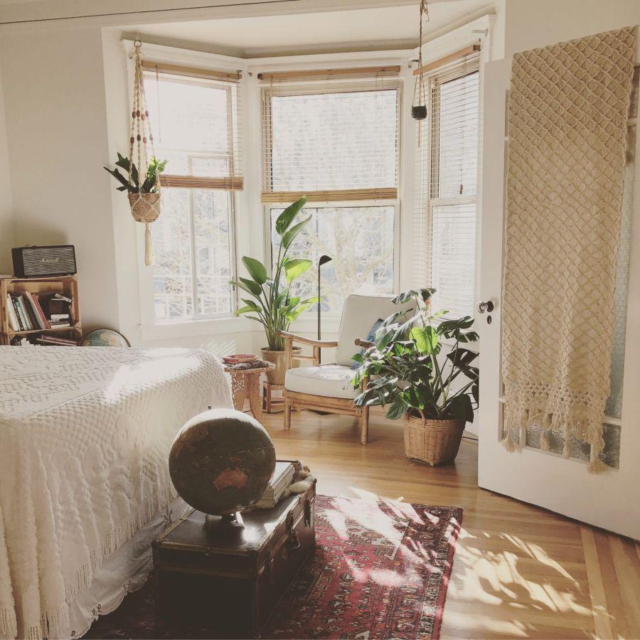 Para sumar oxígeno las plantas son ideales en la habitación