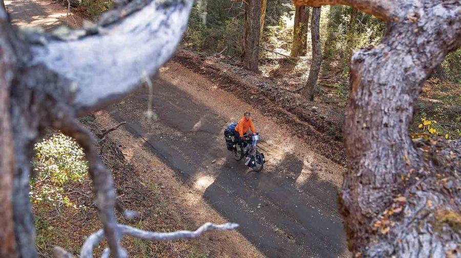 2809_bike