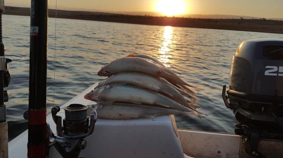 0210_pesca_pejerrey_los_molinos