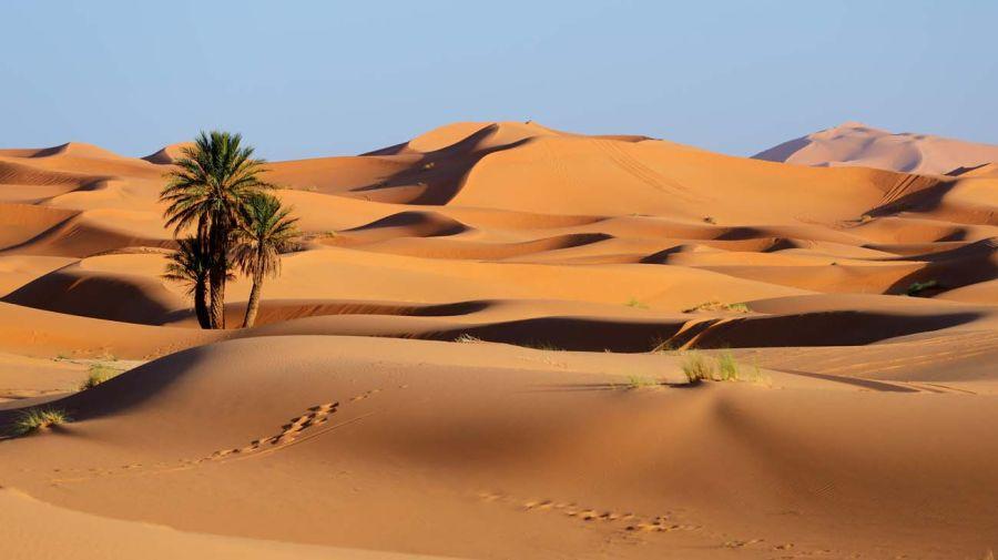 desierto sahara 20201021