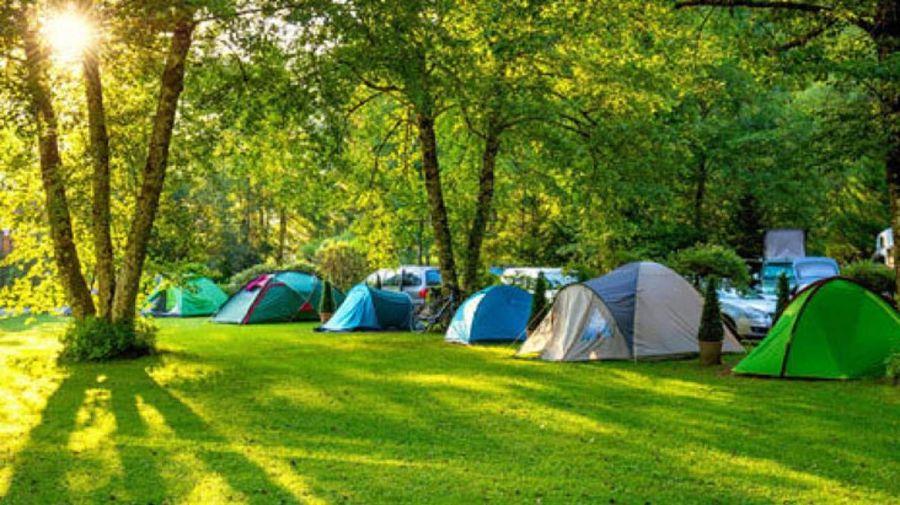 1113_campings