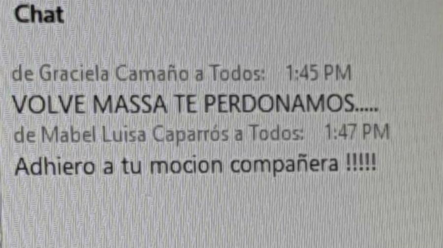 El mensaje de la diputada Camaño.