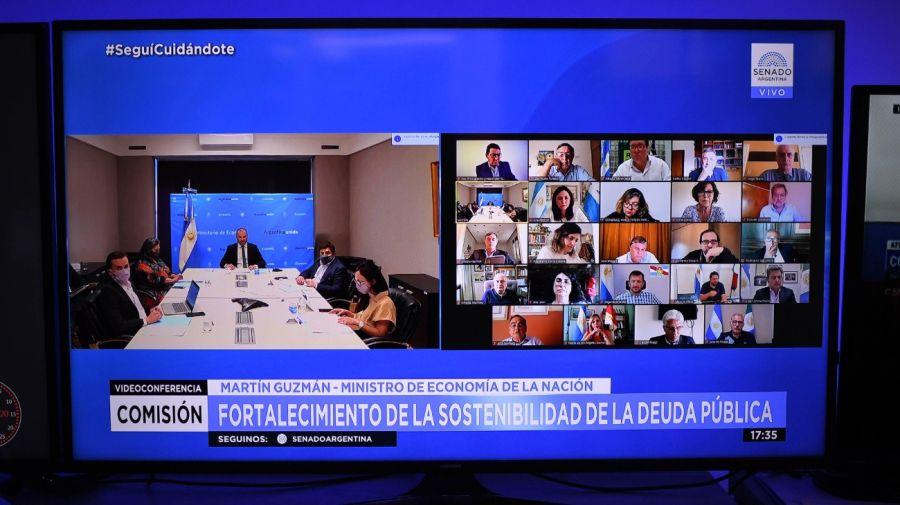 El ministro de Economía Martín Guzmán ante el Senado.